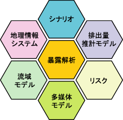 shanel_logo_HP